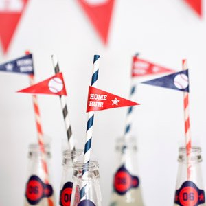 baseball mini pennant flags from  evermine.com