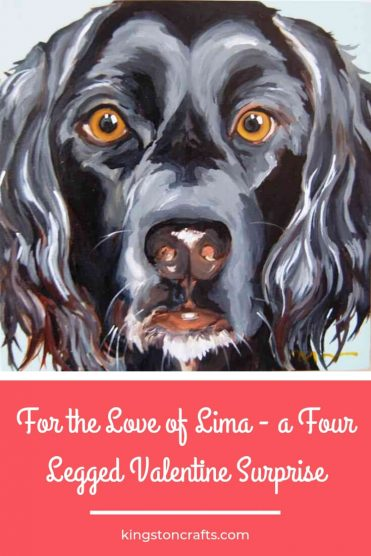For the Love of Lima – a Four Legged Valentine Surprise - Kingston Crafts
