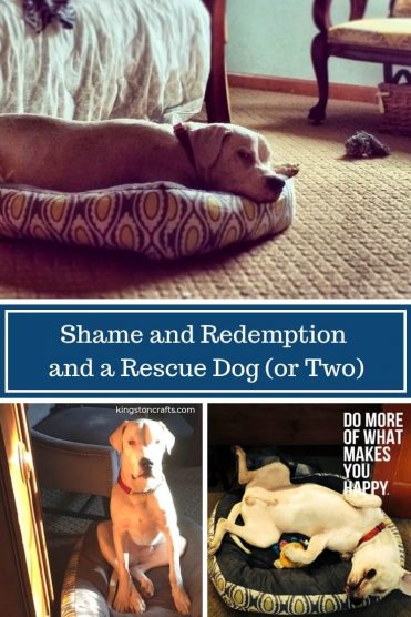 Shame and Redemption and a Rescue Dog (or Two) - Kingston Crafts