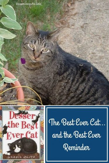 The Best Ever Cat…and the Best Ever Reminder - Kingston Crafts